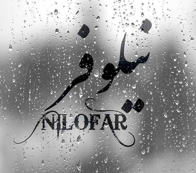 عکس نوشته نیلوفر با طرح قطرات باران