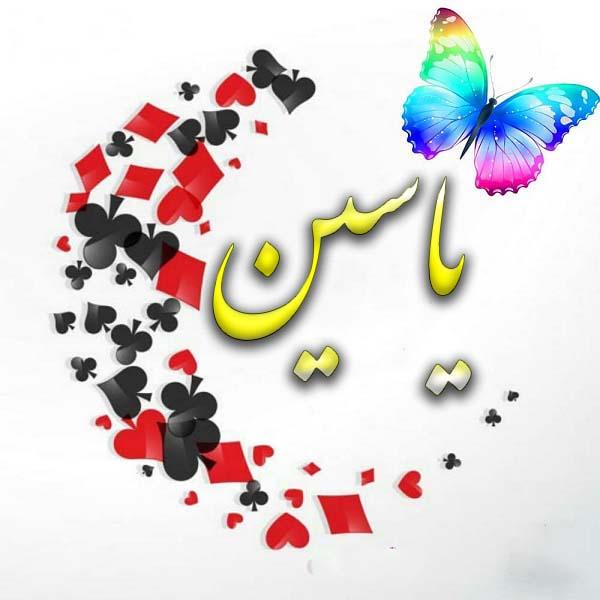 عکس پروفایل اسم یاسین با پروانه