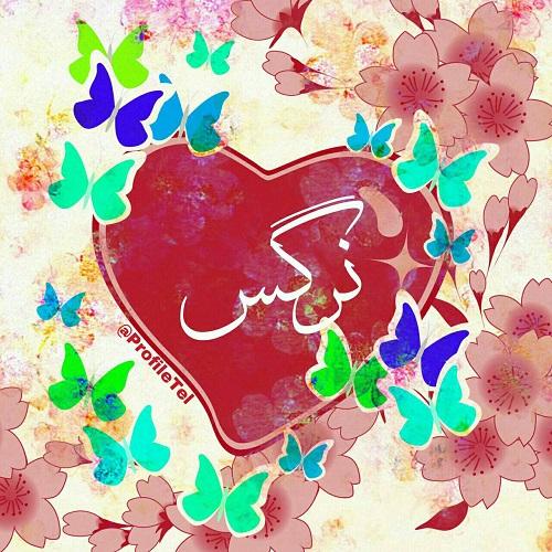 عکس پروفایل عاشقانه اسم نرگس