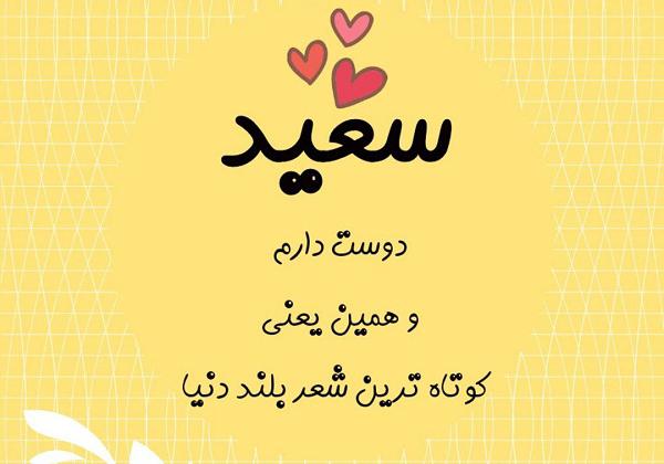 عکس پروفایل سعید دوستت دارم