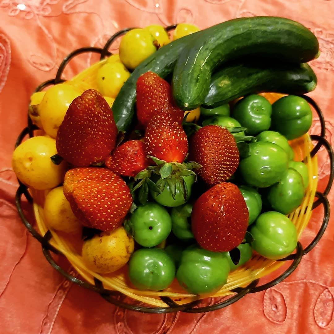 میوه های نوبرونه تابستانی